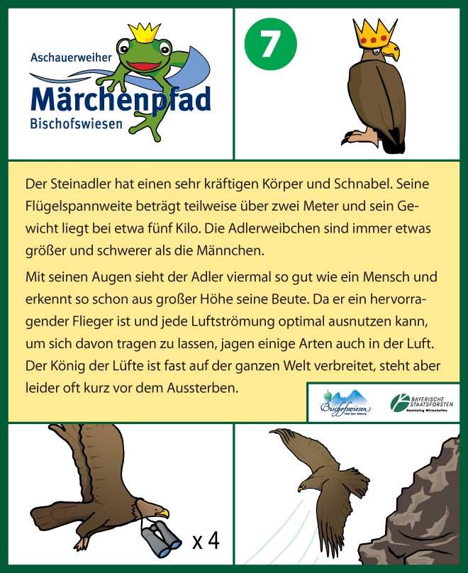 Märchenpfad Bischofswiesen Gestaltungbeispiel Infotafel Adler