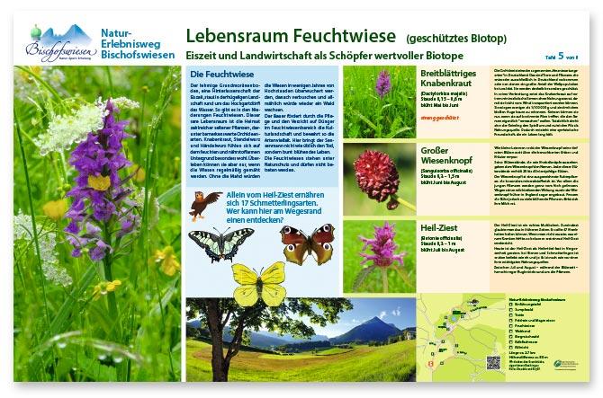 Naturerlebnisweg Bischofswiesen Beispiel Infotafel