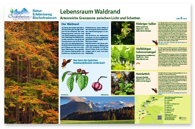 Naturerlebnisweg Bischofswiesen Design einer Infotafel