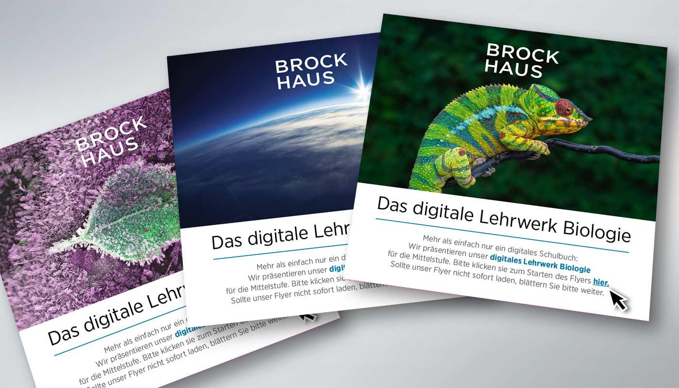 Liedtke & Kern Brockhaus Flyer digitale Lehrwerke Titelseiten
